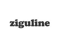 media_partner_ziguline